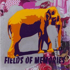 3Steps | Fields of Memories 2016 | Key Items - Elephant